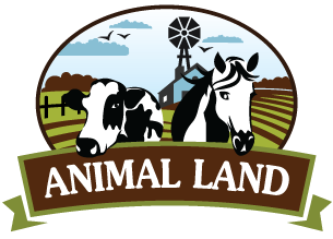 Animal Land Children's Farm